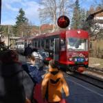 Die nostalgische Rittner-Bahn pendelt zwischen Oberbozen und Collalbo